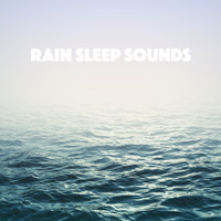 White Noise Research, Sounds of Nature Relaxation and Nature Sounds Artists - Rain Sleep Sounds
