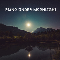 Acoustic Piano Club - Piano Under Moonlight