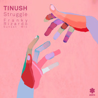 Tinush - Struggle (Franky Rizardo Sunset Mix)
