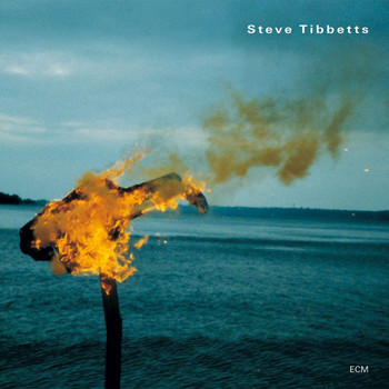 Steve Tibbetts - A Man About A Horse