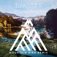 Tingsek - Miss Brand New (Mountain Bird Remix)