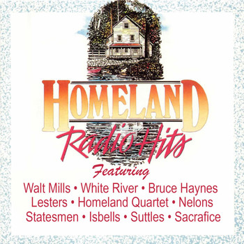 Various Artists - Homeland Radio Hits Vol 2
