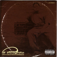 DL Incognito - Life's a Collection of Experiences (Explicit)