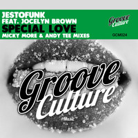 Jestofunk - Special Love (Micky More & Andy Tee Mixes)