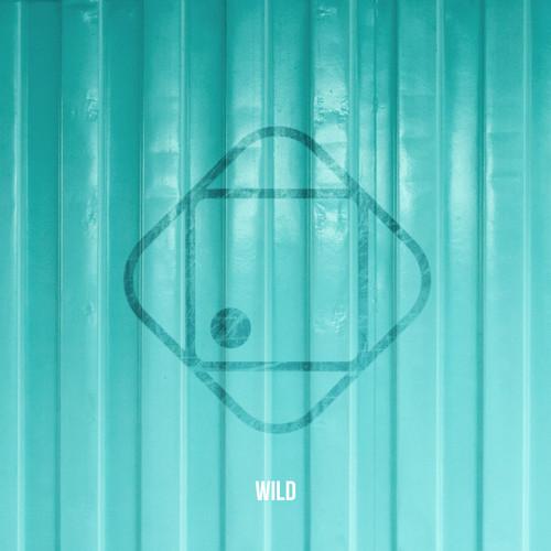 Hugo Helmig MP3 Single Wild