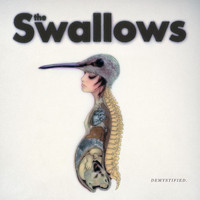 The Swallows - Demystified