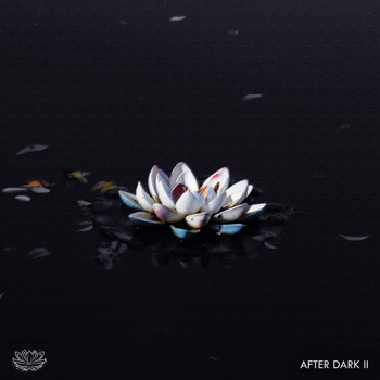 Lilysse Collective - Lilysse After Dark: Vol. 2