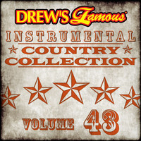 The Hit Crew - Drew's Famous Instrumental Country Collection (Vol. 43)