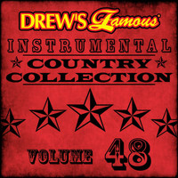 The Hit Crew - Drew's Famous Instrumental Country Collection (Vol. 48)