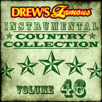 The Hit Crew - Drew's Famous Instrumental Country Collection (Vol. 46)