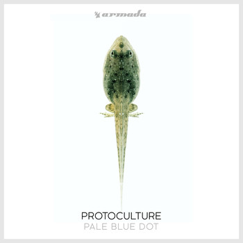 Protoculture - Pale Blue Dot
