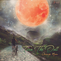 Turn the Doll - Orange Moon