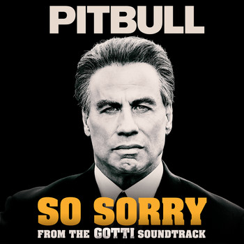 Pitbull - So Sorry (Explicit)