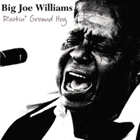 Big Joe Williams - Rootin' Ground Hog