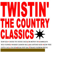 The Raiders - Twistin' The Country Classics