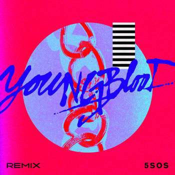 5 Seconds Of Summer - Youngblood (R3HAB Remix)