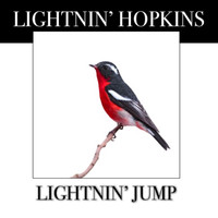 Lightnin' Hopkins - Lightnin' Jump