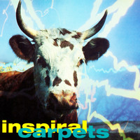 Inspiral Carpets - She Comes in the Fall