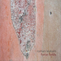 Roman Leykam - Force Fields