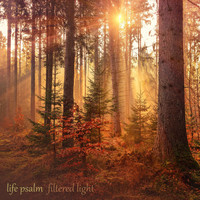Filtered Light - Life Psalm