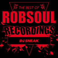 DJ Sneak - Best of DJ Sneak