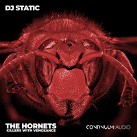 DJ Static - The Hornets (Killers With Vengeance)