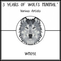 Various Artists - 3 Years Of Wolfs Minimal'