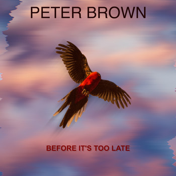 Peter Brown - Before It's Too Late