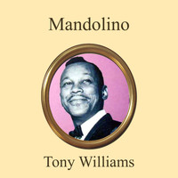Tony Williams - Mandolino