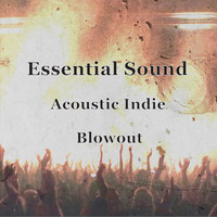 Paul Gelsomine - Essential Sound Acoustic Indie Blowout