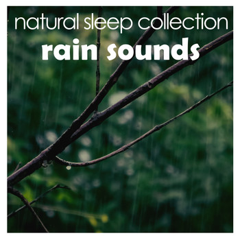#25 Beautiful Background Rain Sounds for Sleep and Zen Relaxation