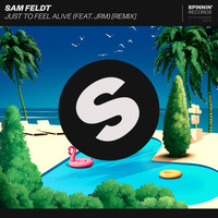 Sam Feldt - Just To Feel Alive (feat. JRM) (Remix)