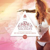 Dj Zappi - Pure Salinas, Vol. 9 (Compiled by DJ Zappi) (Explicit)