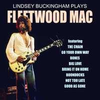 Lindsey Buckingham - Lindsey Buckingham Plays Fleetwood Mac