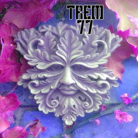Trem 77 - Bloom