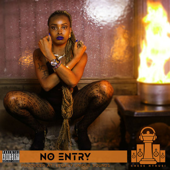 Chess Nthusi - No Entry