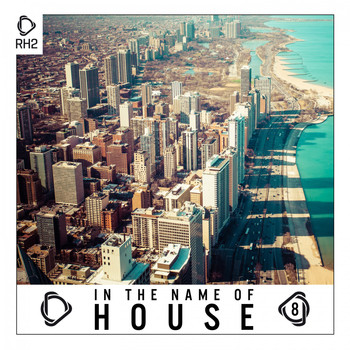 Various Artists - In the Name of House, Vol. 8