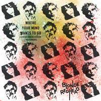 Blonde Redhead - Where Your Mind Wants to Go (feat. Ludovico Einaudi)