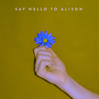 The Dig - Say Hello to Alison