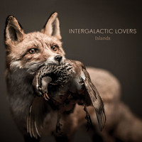Intergalactic Lovers - Islands