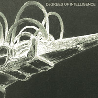 SCB - Degrees of Intelligence