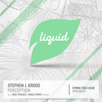 Stephen J. Kroos - Perception