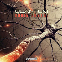 Quantum - Brain Damage