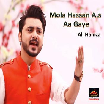 Mola Hassan A s Aa Gaye