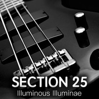 Section 25 - Illuminous Illuminae