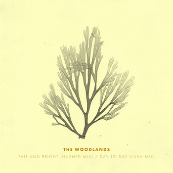The Woodlands - Fair and Bright (Hushed Mix) / Day to Day (Lush Mix)