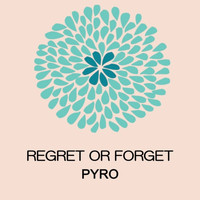 Pyro - Regret or Forget