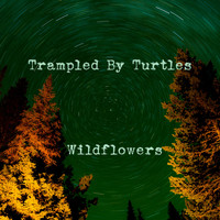 Trampled By Turtles - Wildflowers