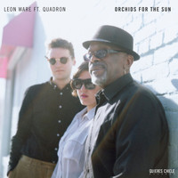 Leon Ware - Orchids for the Sun / Hold Tight