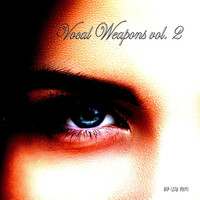 Various Artists - Vocal Weapons, Vol. 2 (Compiled & Mixed by Disco Van)